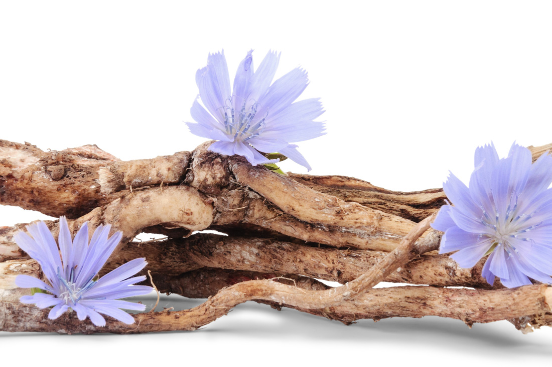 flowers and wood