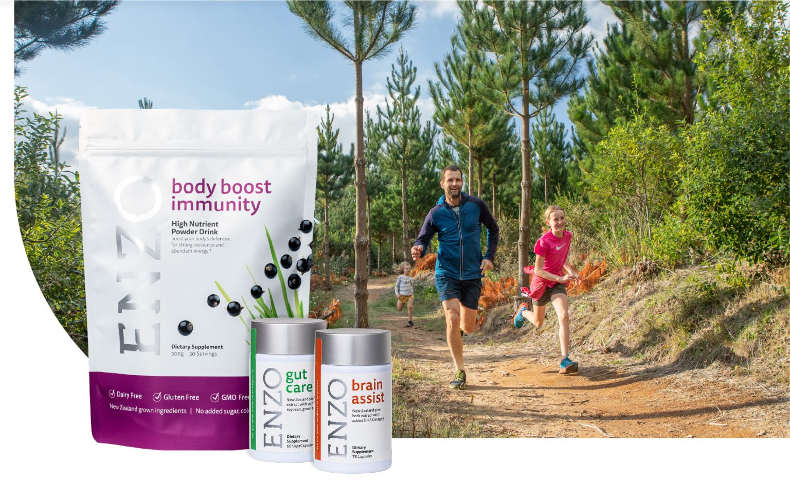 pine-bark-extract-nootropic-nutraceutical